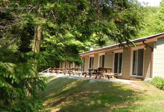cottage rentals in georgian bay vacation rentals