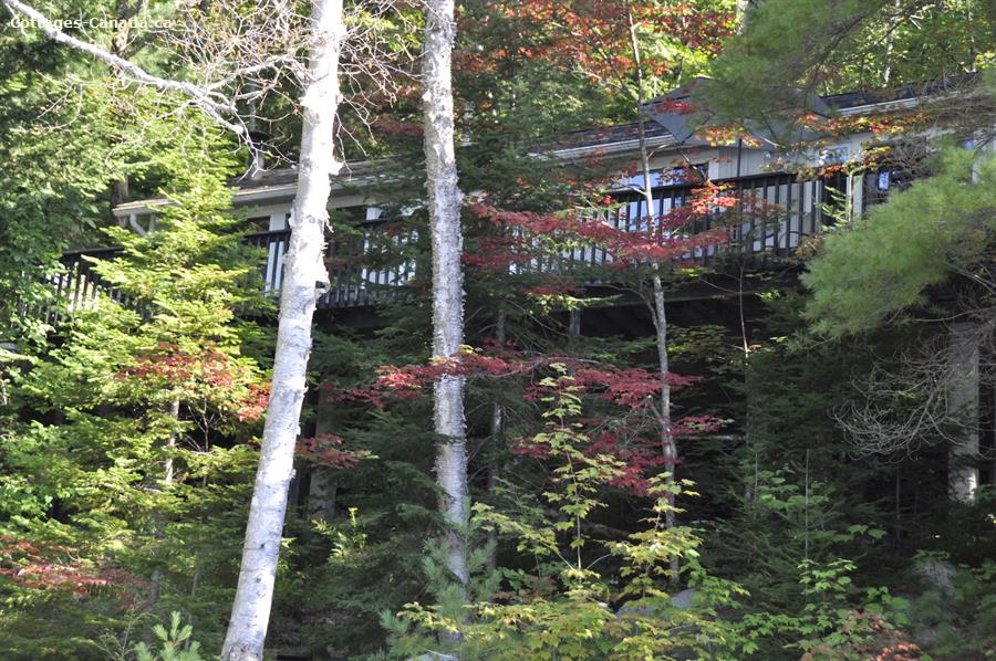 cottage rental Muskoka, Dwight (pic-1)