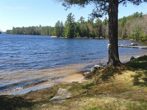 cottage rental South Eastern Ontario, Lennox & Addington (pic-3)