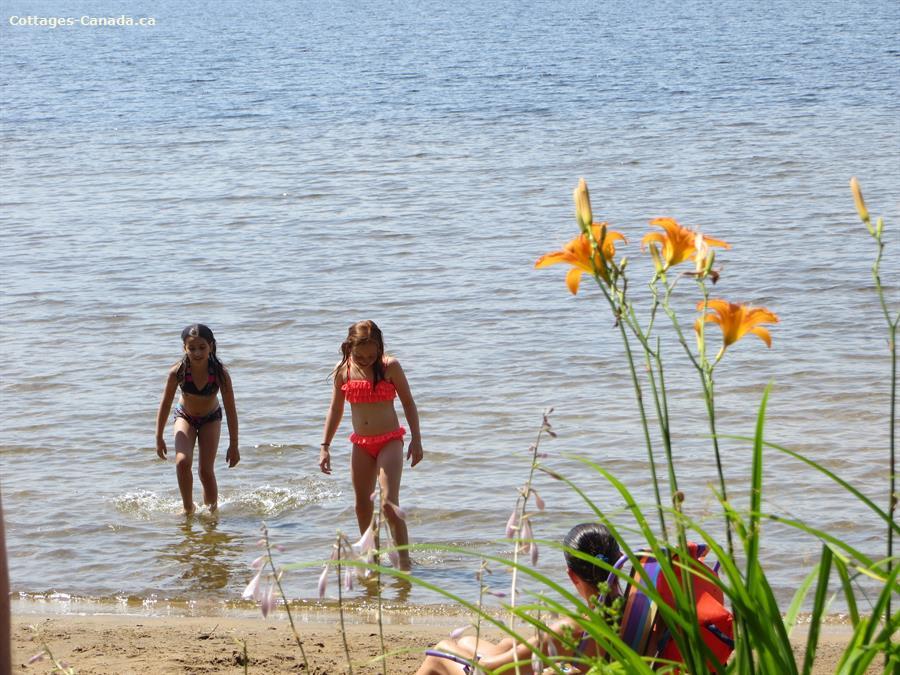 Cottage Rental Ontario Muskoka Huntsville Lakefront