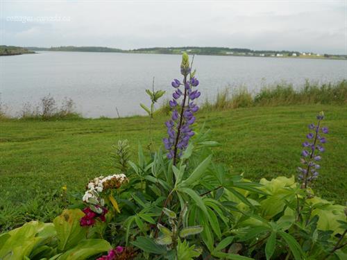 cottage rental Cape Breton, Isle Madame (pic-4)