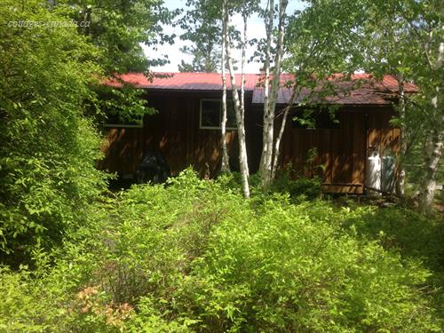 cottage rental Northeastern Ontario, Latchford (pic-4)