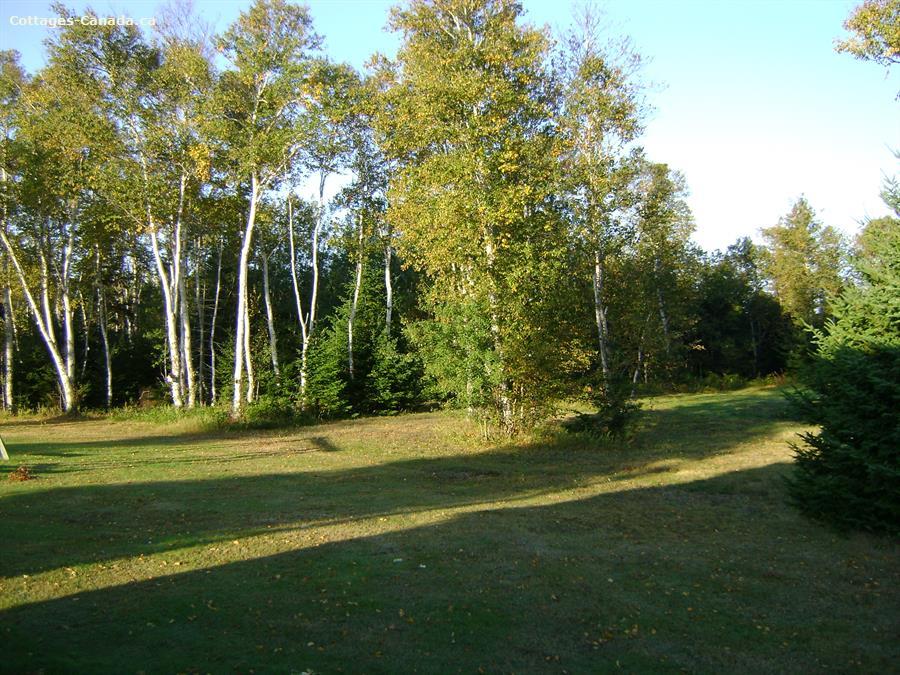 cottage rental Points East Coastal, Wood Islands (pic-6)