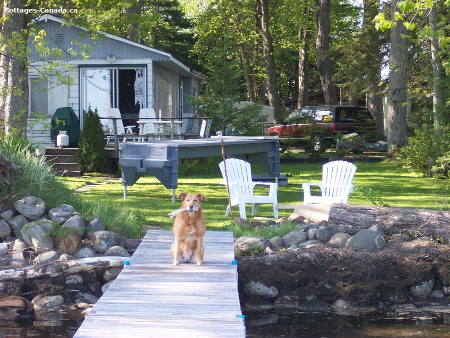 Cottage Rentals In Ontario Vacation Rentals Ontario