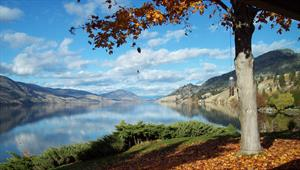 waterfront cottage rentals Penticton, Thompson Okanagan