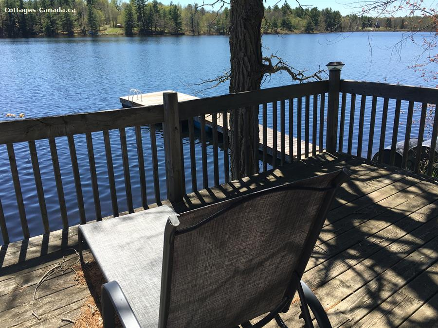 cottage rental South Eastern Ontario, Central Frontenac (pic-6)