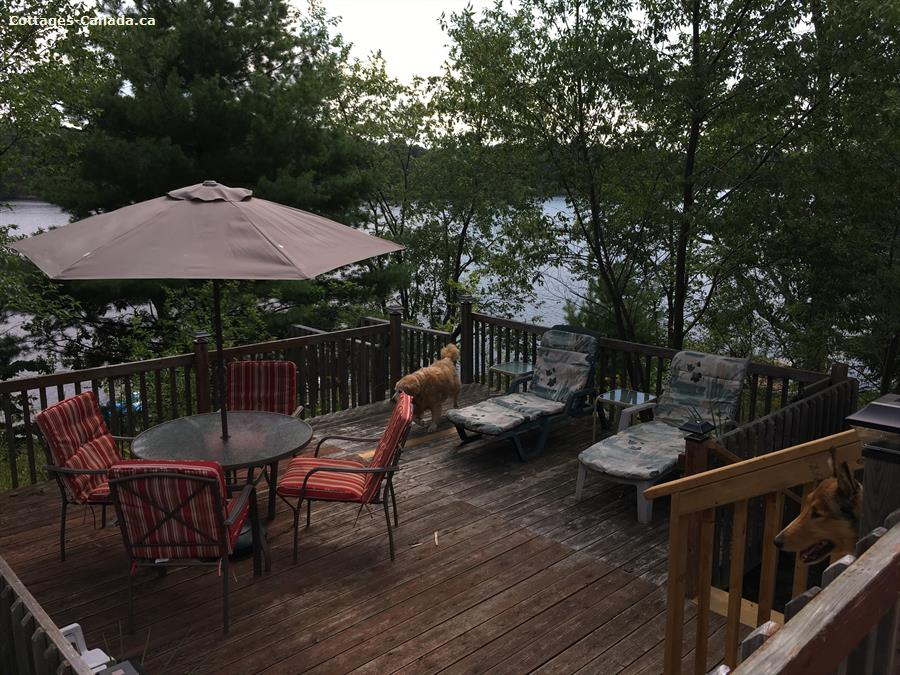 cottage rental South Eastern Ontario, Sharbot Lake (pic-8)