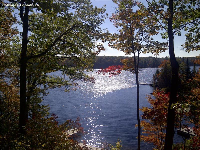 cottage rental Parry Sound, Dunchurch (pic-3)