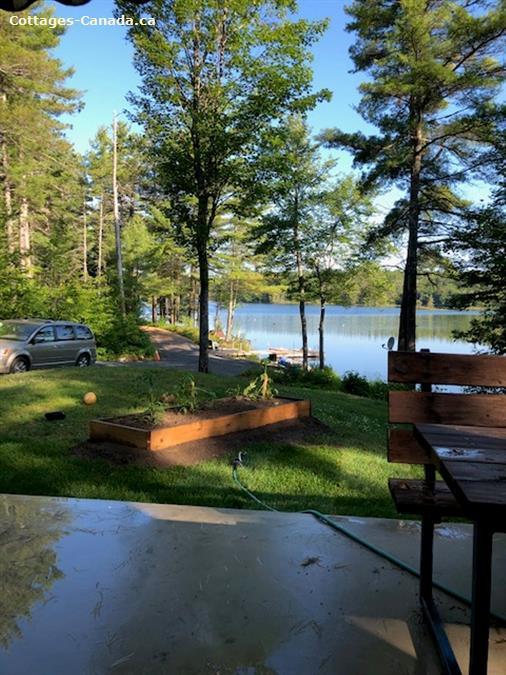 cottage rental Southwest Ontario, CLOYNE (pic-16)